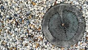 在庭院里阻拦从禅宗样式的被铺的走道圈子白色被雕刻的莲花叶子和沙粒装饰地板的纹理背景 免版税图库摄影