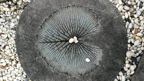 在庭院里阻拦从禅宗样式的被铺的走道圈子白色被雕刻的莲花叶子和沙粒装饰地板的纹理背景 库存图片