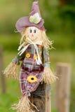 在庭院领域的逗人喜爱的小的scarycrow玩偶 免版税库存照片