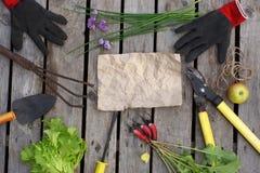 在庭院题材的布局 园艺工具和被收获的庄稼在被弄皱的纸附近一张被传播 复制您的文本的空间 图库摄影