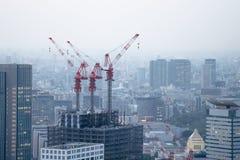 在建筑大厦顶部的建筑用起重机 库存图片
