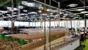 在建筑师罗杰斯Stirk港口办公室里面+成为伙伴 免版税库存图片