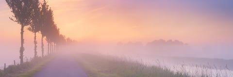 在开拓地风景的有雾的日出在荷兰 免版税库存图片