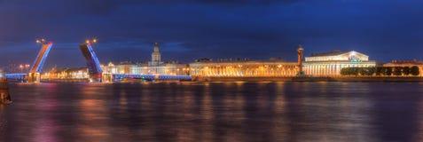 在开放宫殿桥梁和涅瓦河的夜视图 库存照片