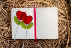 在开放笔记本的红色心脏花 图库摄影