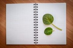 在开放笔记本的绿色叶子 免版税库存照片