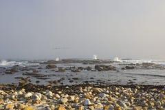 在开普敦、灰色波浪带来的天气和石头的沿海照片 免版税图库摄影