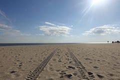 在开普梅海滩的轮胎轨道 库存照片