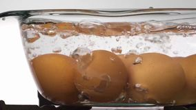 在开水的鸡蛋 库存照片