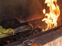 在开火烘烤的菜 库存图片