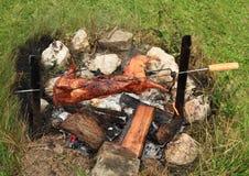 在开火烹调的兔子 免版税库存照片