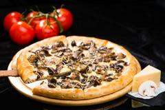 在开胃意大利乳酪piz被切的片断的选择聚焦  免版税图库摄影