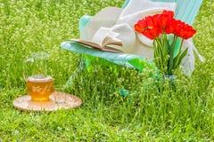 在开花的庭院里放松在一个晴天 免版税库存照片