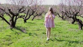在开花的树庭院里去桃红色礼服的白肤金发的女孩 影视素材