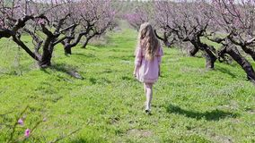 在开花的树庭院里去桃红色礼服的白肤金发的女孩 股票视频