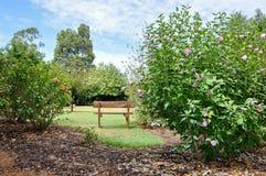 在开花的灌木中的庭院长凳 免版税库存照片