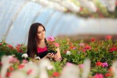 在开花的花中的女性企业家温室工作者 库存图片