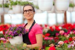 在开花的花中的女性企业家温室工作者 免版税库存照片