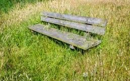 在开花的草之间的简单的被风化的长木凳 免版税库存图片