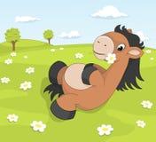 在开花的草甸的逗人喜爱的动画片小马 免版税库存图片