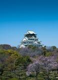 在开花castlein日本大阪结构树间 免版税库存照片