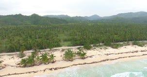 在异乎寻常的地方的俯视图有沙滩和棕榈树森林绿松石的浇灌与小波浪 天堂 股票视频