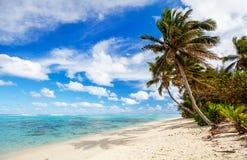 在异乎寻常的海岛的美丽的热带海滩在南太平洋 图库摄影