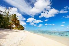 在异乎寻常的海岛的美丽的热带海滩在南太平洋 免版税库存照片