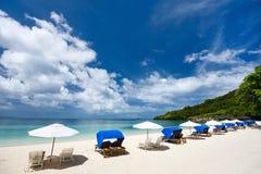 在异乎寻常的海岛的美丽的热带海滩 库存图片