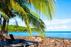 在异乎寻常的热带棕榈滩的Sunbeds 免版税库存照片