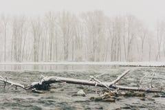 在弓河的冬天风暴 库存图片