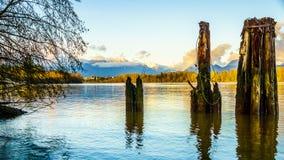 在弗拉塞尔河的Mountainn视图在不列颠哥伦比亚省,加拿大 免版税库存照片