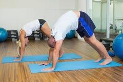 在弯曲的姿势的运动的夫妇在健身演播室 免版税库存照片
