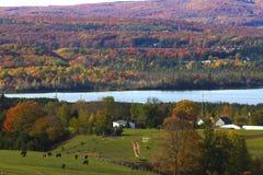 在弯曲的湖的秋天 图库摄影