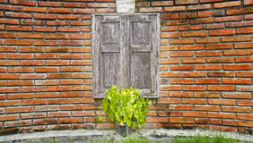 在弯曲的砖墙上的老木窗口。 库存照片