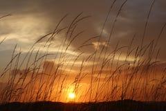 在强的雷暴以后的美好的日落 库存图片