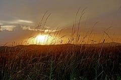 在强的雷暴以后的美好的日落 库存照片