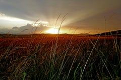 在强的雷暴以后的美好的日落 免版税图库摄影