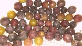 在形成一个几何样式的滤锅的康科德紫葡萄 库存照片