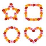 在形状的雏菊花 库存图片