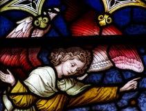 在彩色玻璃的一个天使 免版税库存图片
