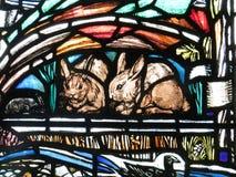 在彩色玻璃的兔子 图库摄影