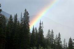 在彩虹一些其中 免版税库存照片