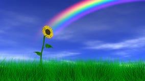 在彩虹下的向日葵 皇族释放例证