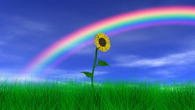 在彩虹下的花 向量例证