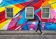 在彩虹街道艺术盖的墙壁的被关闭的窗口 免版税图库摄影