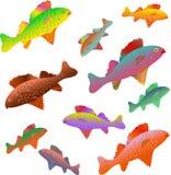 在彩虹颜色绘的鱼 免版税库存图片