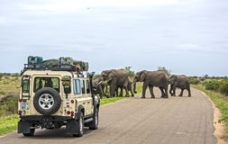 在徒步旅行队在非洲 库存图片