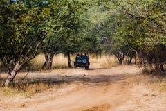 在徒步旅行队车的Tourit在Ranthambore森林 免版税图库摄影