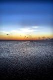在微明的海湾 免版税图库摄影